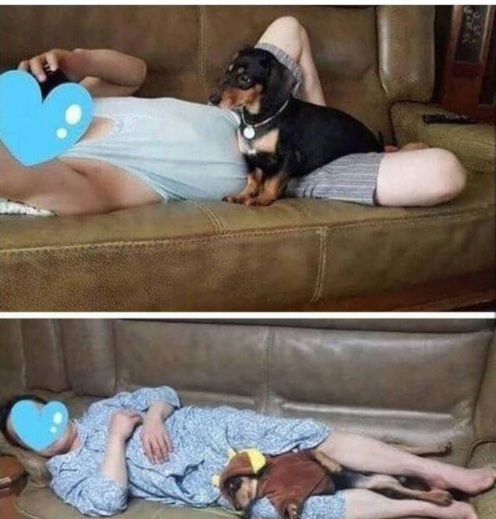개 데려오면 갖다 버린다는 아부지들 특징 3.jpg