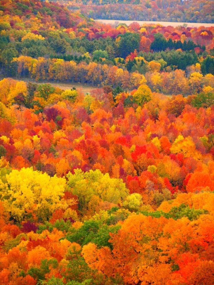 가을_004.jpg