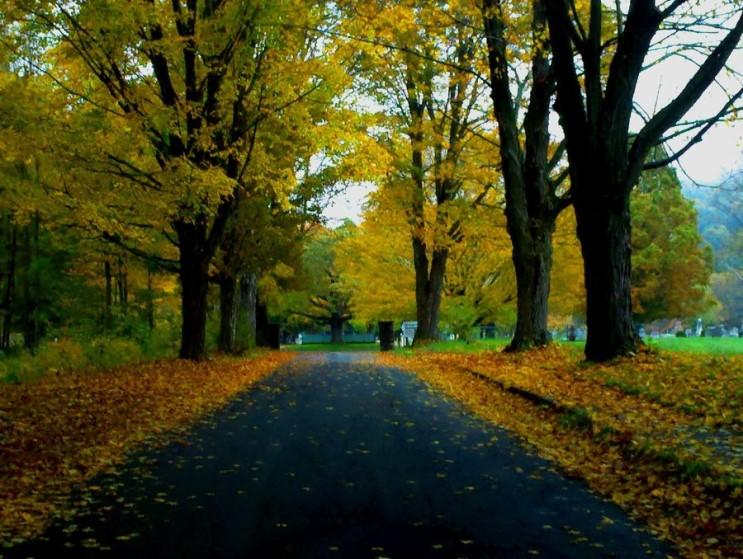 가을_010.jpg
