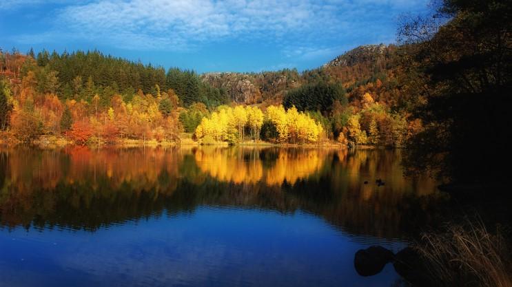 가을_017.jpg