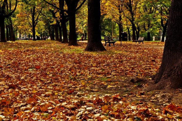 가을_020.jpg