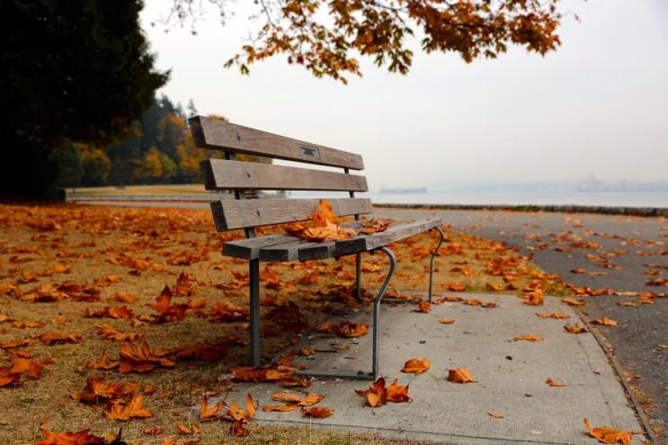 가을_021.jpg