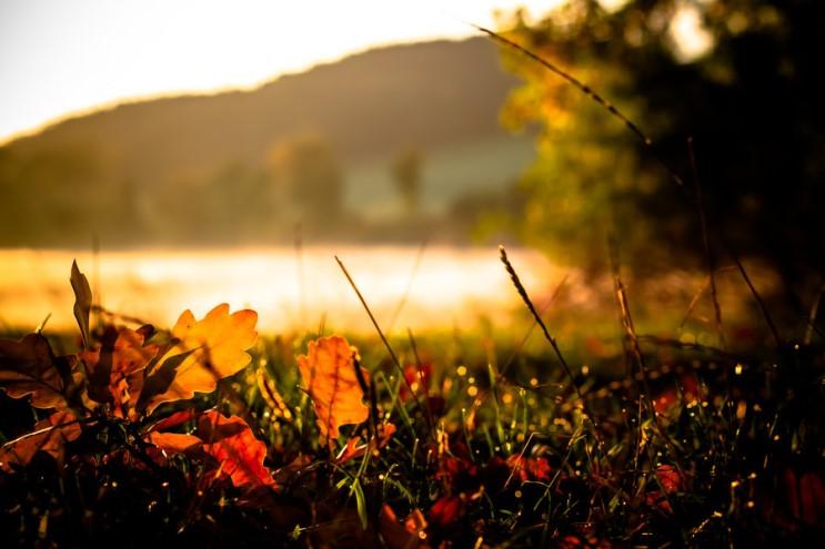 가을_023.jpg