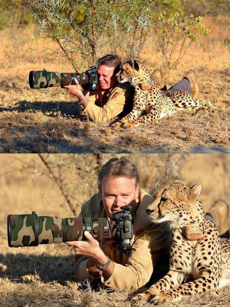 귀여운 야생동물과 사진찍기 13.jpg