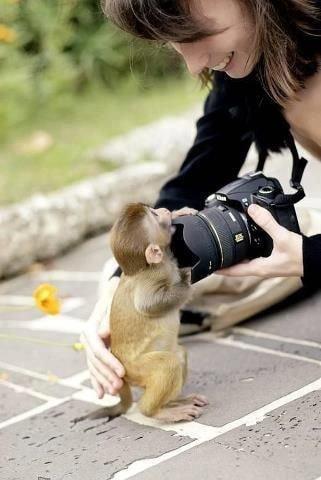귀여운 야생동물과 사진찍기 25.jpg