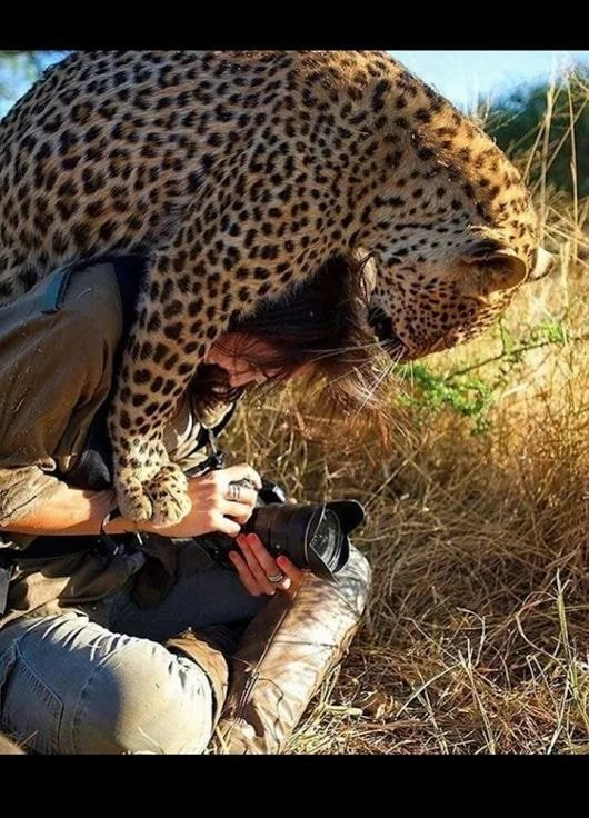 귀여운 야생동물과 사진찍기 9.jpg