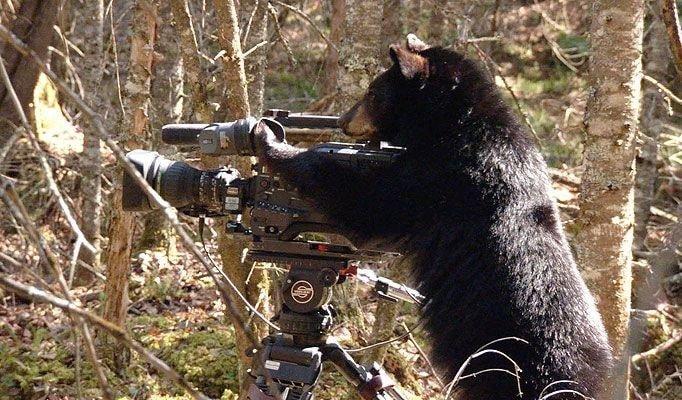 귀여운 야생동물과 사진찍기 37.jpg