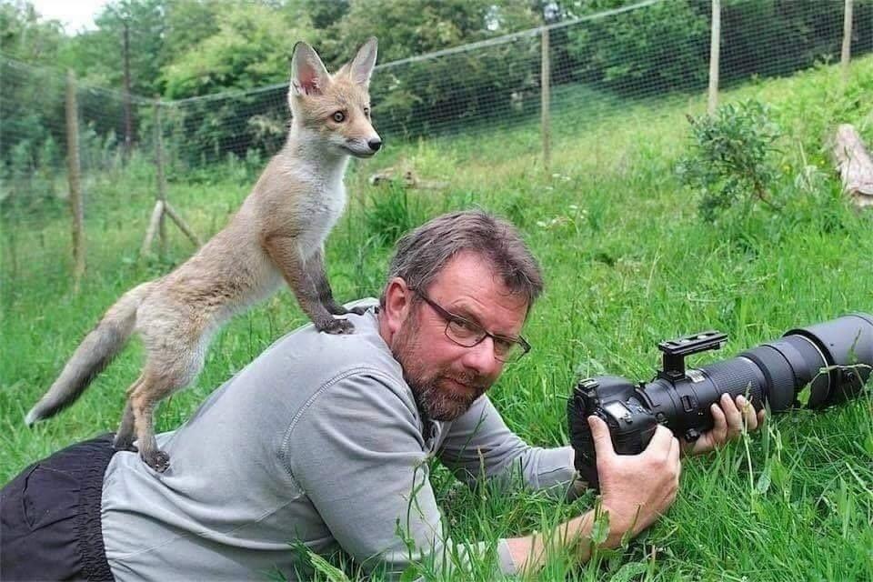 귀여운 야생동물과 사진찍기 15.jpg