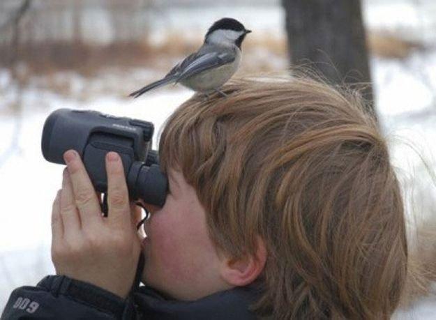 귀여운 야생동물과 사진찍기 21.jpg