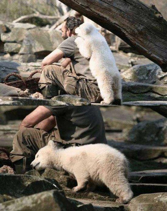 귀여운 야생동물과 사진찍기 35.jpg
