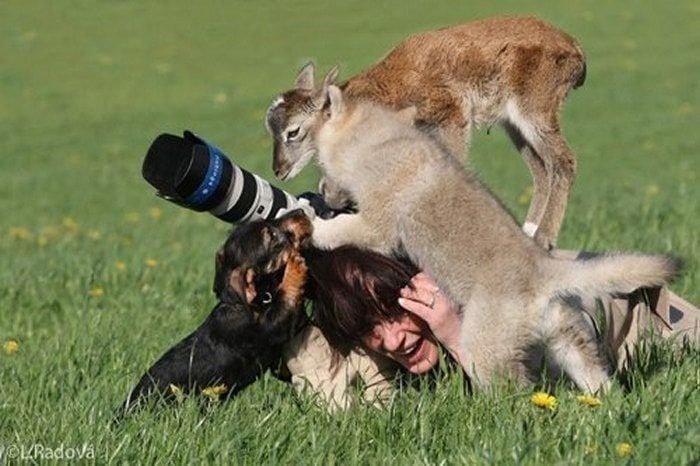 귀여운 야생동물과 사진찍기 5.jpg
