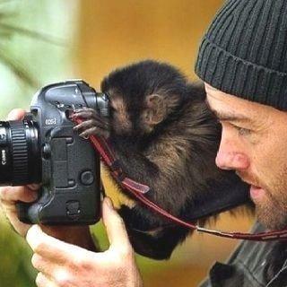 귀여운 야생동물과 사진찍기 16.jpg