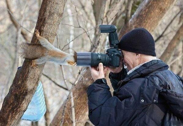 귀여운 야생동물과 사진찍기 29.jpg