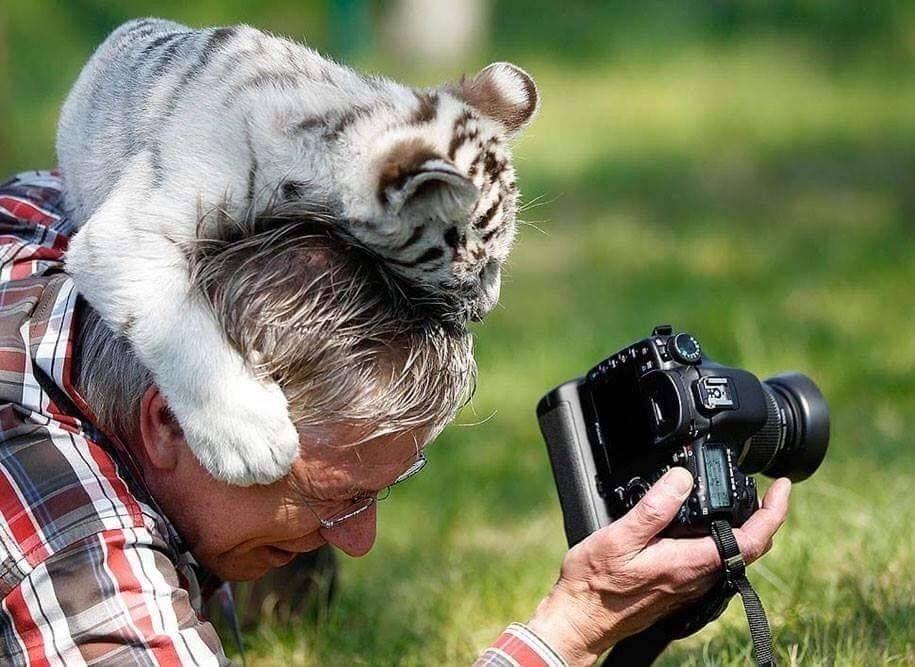 귀여운 야생동물과 사진찍기 12.jpg