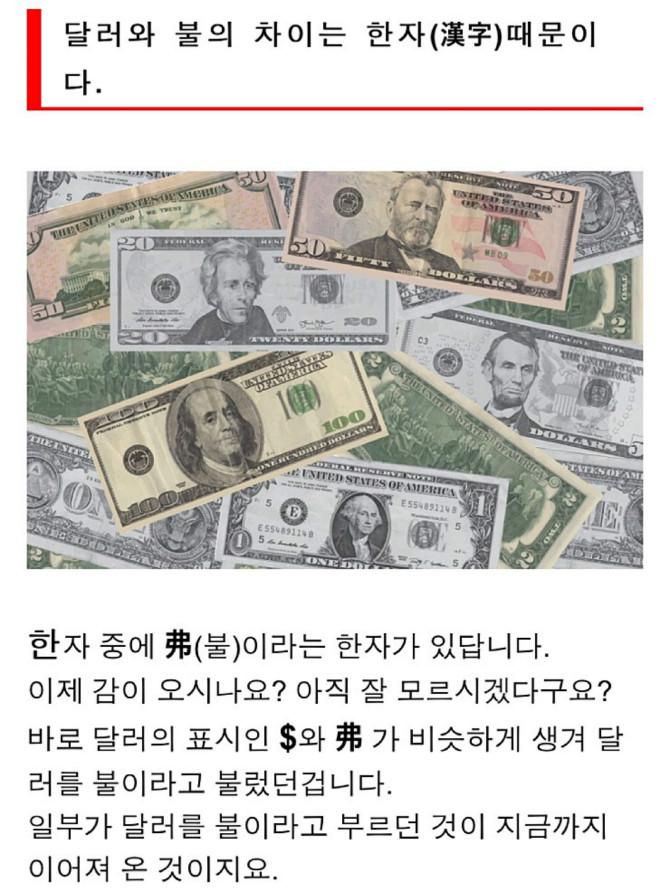 달러를 불이라고 부르는 이유 3.jpg