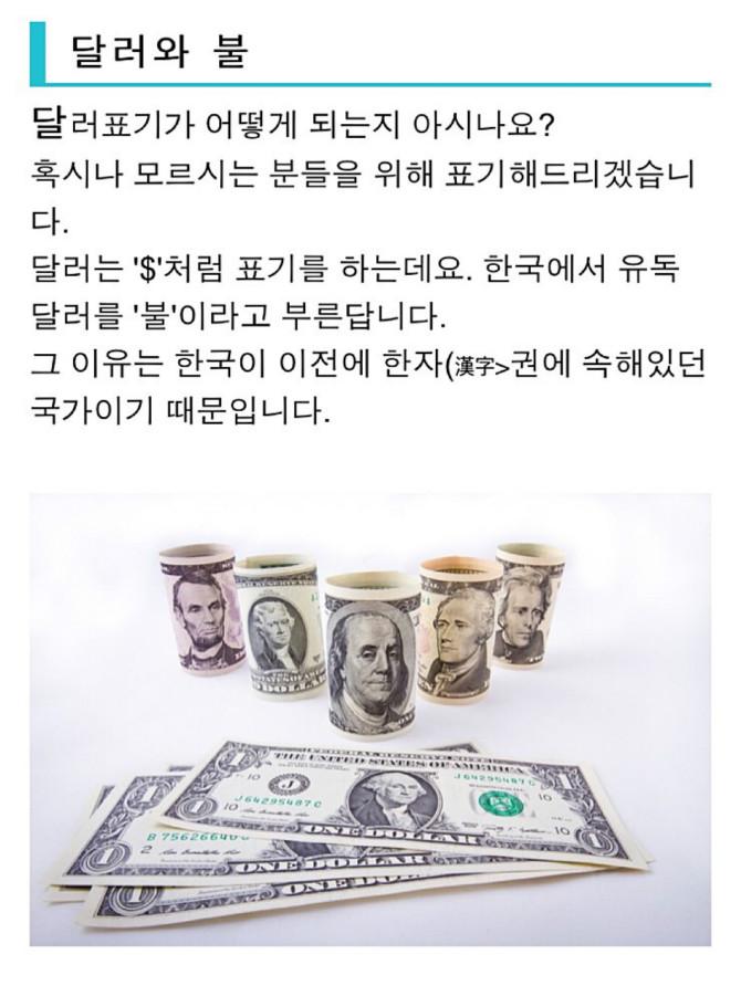 달러를 불이라고 부르는 이유 2.jpg